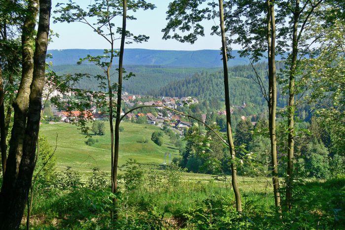Beste Spielothek in Bergstadt-Clausthal-Zellerfeld finden