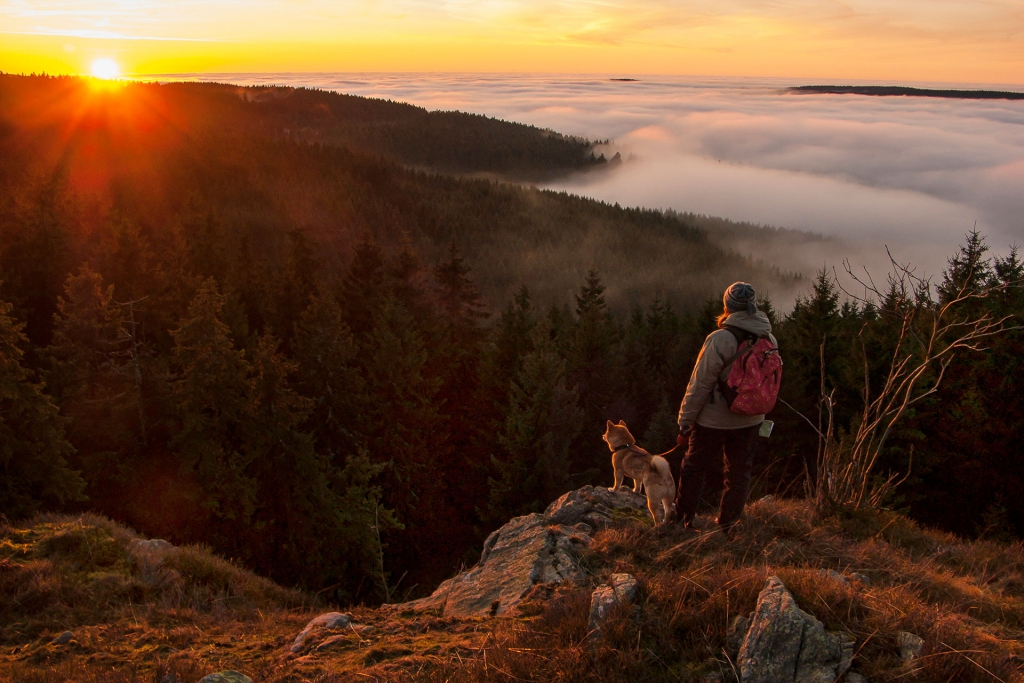 Sunset in the Harz mountains
