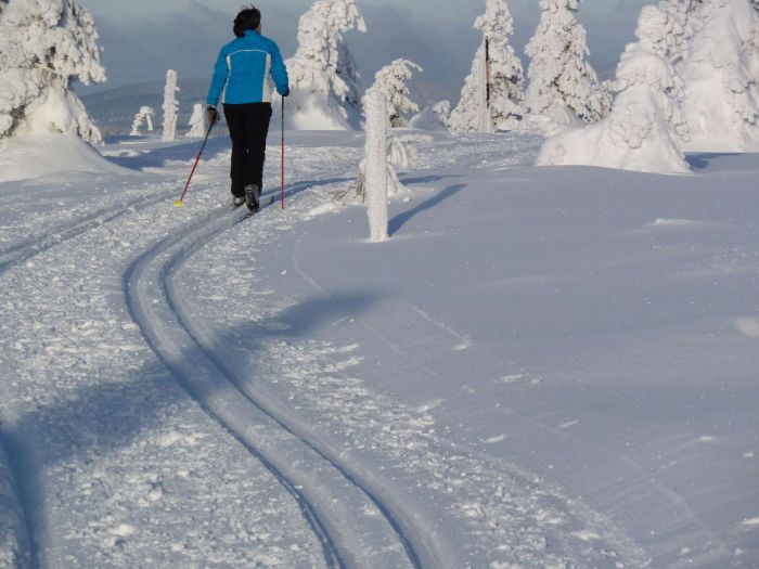 A woman on a cross-country ski track