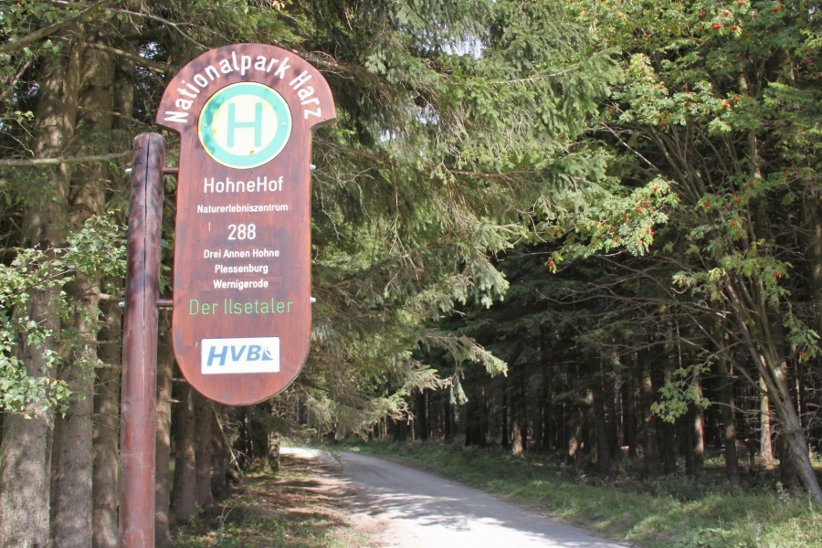 Nationalpark-Bushaltestelle Hohnehof